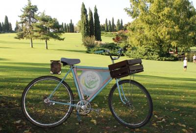 In bici tra i viali del Parco Giardino Sigurtà