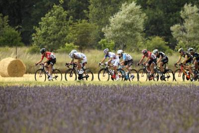 Vivi l'esperienza del Tour al Bianchi Cafè e Cycles