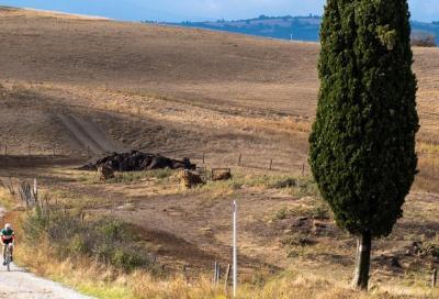 Eroica Montalcino confermata. Si pedala tra le vigne del Brunello