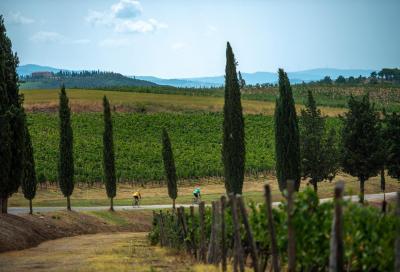 Torna l'Eroica sulle strade bianche di Montalcino. In 1500 al via domenica