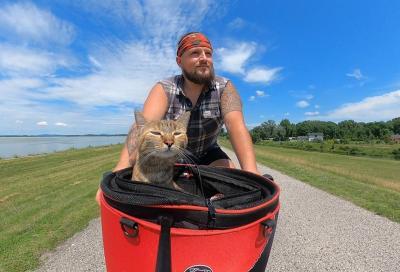 La storia di un operaio e di una gattina di strada diventati compagni di viaggio. A bordo di una bicicletta.