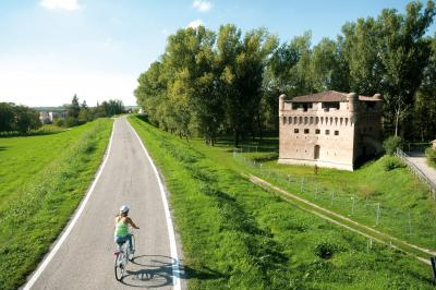 A Ferrara torna il Festival del Ciclista lento. Sabato 30 anche il record dell'ora al contrario